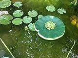 Frosch Teichdekoration Schwimmform Teichfrosch Teichdeko Gartendekoration