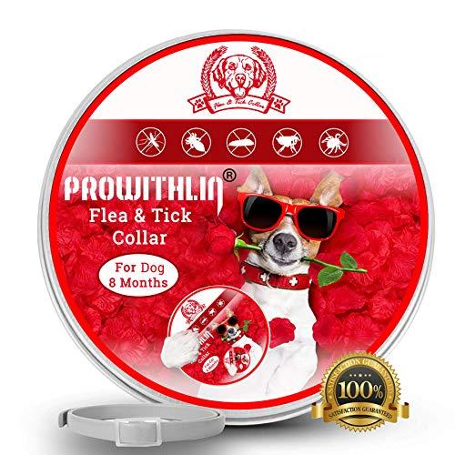 Prowithlin Collar Antiparasitario Perros contra Pulgas