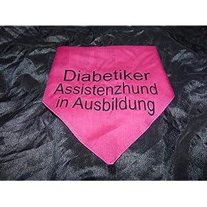 Hundehalstuch Diabetiker Assistenzhund in Ausbildung