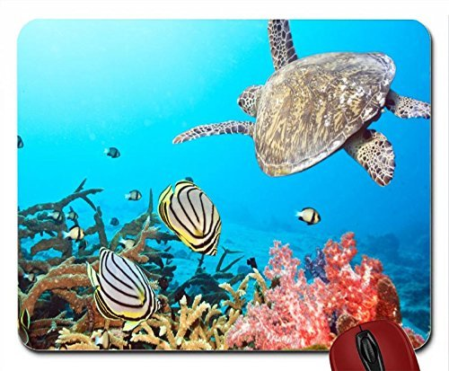 sea-world-hd-wallpaper-mouse-pad-computer-mousepad