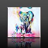 50x50cm Toile d'impression Peinture Imprimée sur Canevas Dessin éléphant Art Moderne Illumination de l'enfant