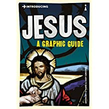 Introducing Jesus: A Graphic Guide (Introducing.)