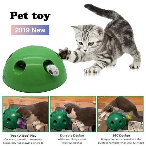 Dong Ran Kreatives Katzenspielzeug Pop Play Pet Toy, 360 ° Kuppelform Fangen Sie Den Maussimulator Katzenkratzgerät für Cat Sharpen Claw, Sport Chase Toy für Hauskatzen