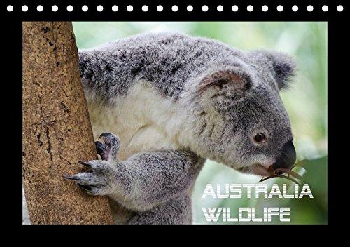 Australia Wildlife (Tischkalender 2018 DIN A5 quer): Portraits von Australiens einzigartiger Tierwelt (Monatskalender, 14 Seiten ) (CALVENDO Tiere) ... 01, 2017] by Wolfgang Schömig, Luxscriptura