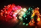 #1: Lilone 4 Rice Light Serial String Bulbs (Ladi) Decoration Lighting for Christmas XMAS (Random Colors)