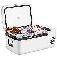 Car Compressor Refrigerator For Travel Camping Picnic, 12L