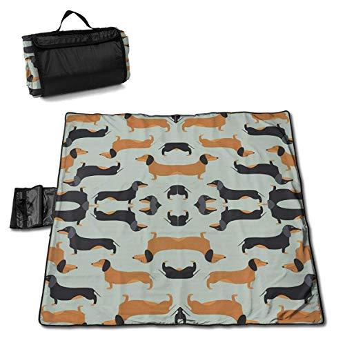 Dachshund Wallpaper Folding Portable Picnic Blanket 57