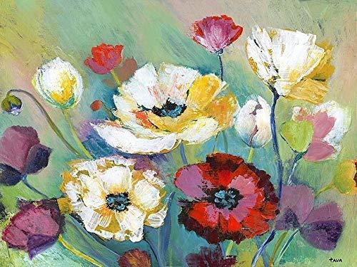 Keilrahmen-Bild - Tava Studios: Alexs Garden Leinwandbild Garten-Blumen Wiese bunt