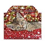 Adventskalender für Katzen