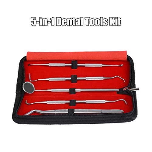 inkint-5-in-1-stainless-steel-dental-tools-kit-dental-hygiene-kit-to-remove-plaque-calculus-dental-c