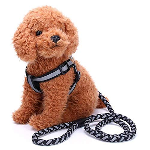 XJZxX Hundeleine Rutschseil Führleine Starkes Hochleistungsgeflochtenes Seil Keine Zugleine Führleinen Mittelgroße Hunde (Farbe : Schwarz, größe : L)