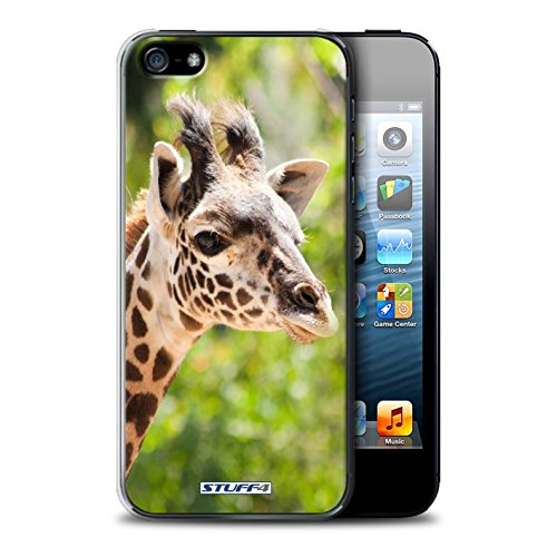 Coque de Stuff4 / Coque pour Apple iPhone 5/5S / Loup Design / Animaux sauvages Collection Girafe
