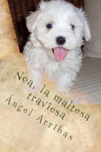 Noa, la maltesa traviesa por Ángel Arribas
