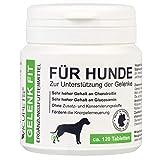 VICUPETS® Gelenk Fit für Hunde | bei Gelenkschmerzen & Arthrose | für gesunde Knochen & Gelenke | hochdosiertes Glucosamin und Chondroitin | Made in Germany
