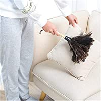 RAILONCH Ostrich Duster Solid Wood Handle Duster Household Draws Dust Particles on Cleaning and Dusting 32 x 25 cm