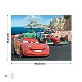 Disney Cars Lightning McQueen Bernoulli Leinwand Bilder (PPD17O1FW)