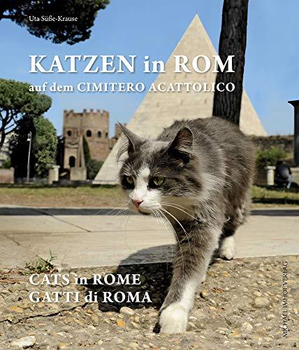Katzen in Rom auf dem Cimitero Acattolico / Cats in Rome at the Cimitero Acattolico / Gatti di Roma al Cimitero Acattolico