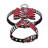 Balock Schuhe Brustgurte,Einstellbare Hundeleine Bowknot Strass Brustgurte,Hundegeschirr Bowknot Brustgurte Einstellbare Sicherheitsgurt (Rot, L)