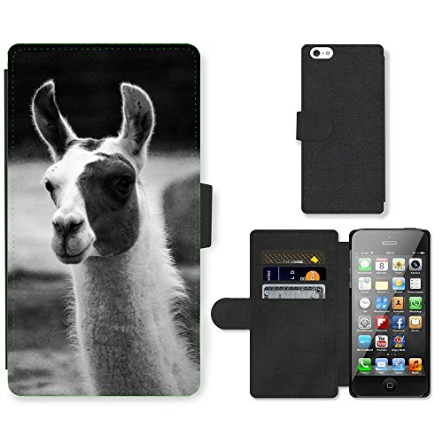 GoGoMobile PU Leather Flip Custodia Protettiva Case Cover per // M00118745 Lama nature animale // Apple iPhone 5 5S 5G