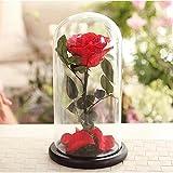 Wmshpeds rose fiori Eternal fiorellini principe rose conservati i regali di Natale regali di compleanno creativi