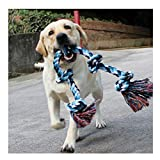 Forwindog Hundespielzeug aus Seil für Starke große Hunde