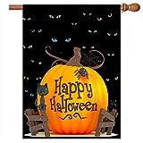 De Lon Fahne Halloween cat Eyes 28x40