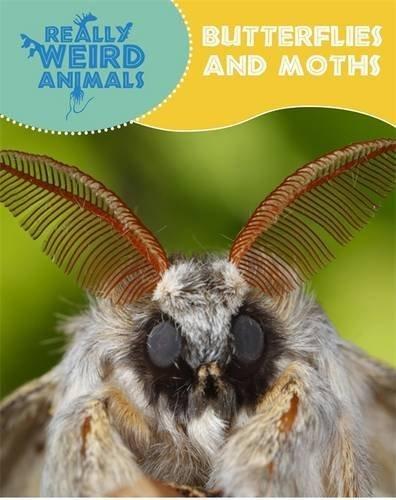 Butterflies and Moths (Really Weird Animals) by Clare Hibbert (2015-04-23)