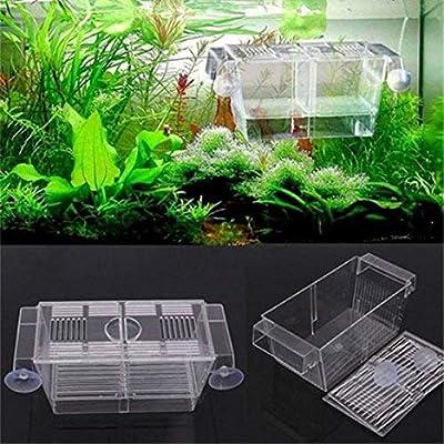 Ogquaton Aquarium Zucht Isolation Box Fischzüchter Brüterei Zucht Züchter Aufzucht Falle Box langlebig und nützlich