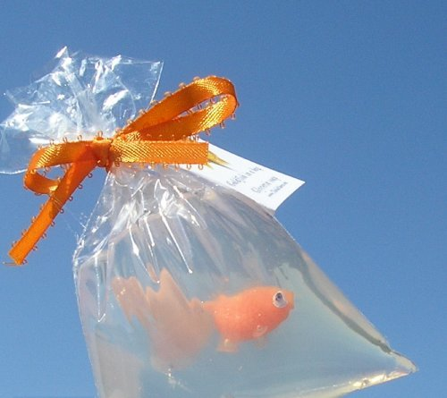 fish-in-a-bag-soap-carnival-prize-fish-soaps-games-prizes-party-favors-orange-goldfish-soap-tied-wit