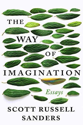 The Way of Imagination: Essays (English Edition)