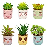 Yangbaga 6 Pcs Joli Pot Avez Plantes Succulentes Artificielles Différentes et Sympa émoticône Pot Plante Succulente Décoration pour Cuisine Bureau Etagere (6 * 6,5cm)...