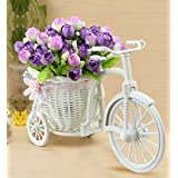 SIFTY COLLECTIONS Plastic Cycle Shape Flower Vase with Peonies Bunches (White)