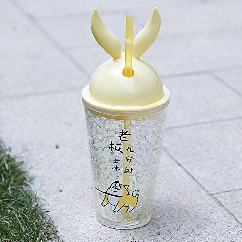 scldream PlastikbecherSommer gebrochen Eisbecher Sippy Cup kleine Süßwasser Tasse Mädchen koreanischen Doppelschicht-Kunststoff, gehen EIS, 450ml