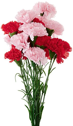 Fourwalls Single Carnation (Set of 15, Red and Light Pink)