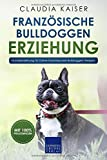 Französische Bulldogge Erziehung: Hundeerziehung für Deinen Französische Bulldoggen Welpen -