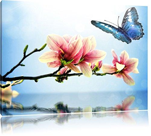 Farfalla blu con Magnolia Blossom, Formato: 80x60 su tela, XXL enormi immagini completamente Pagina con la barella, stampa d'arte sul murale con telaio, più economico di pittura o un dipinto a olio, non un manifesto o un banner,