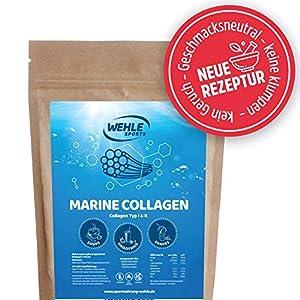 Marine Kollagen Pulver 500g – Collagen Hydrolysat Peptide Typ I und Typ II – Wehle Sports Fisch Kollagen Geschmacksneutral