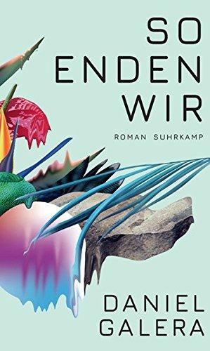 Buchseite und Rezensionen zu 'So enden wir: Roman' von Daniel Galera