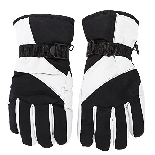 Herren Ski-Handschuhe - TOOGOO(R)Herren Ski Handschuhe Thermal wasserdicht fuer das Winter Outdoor Sports Snowboard (grau)