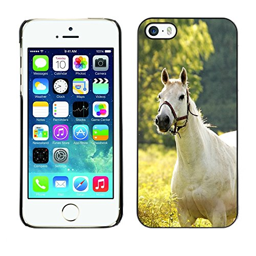 [ For APPLE IPHONE 5 / 5S ][ Xtreme-Cover ] [ Hart Rückseite Schutzhülle Case ] - The White Horse B&W
