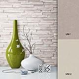 NEWROOM Steintapete Beige Vliestapete Stein Muster/Motiv schöne moderne und edle Design 3D Optik , inklusive Tapezier Ratgeber