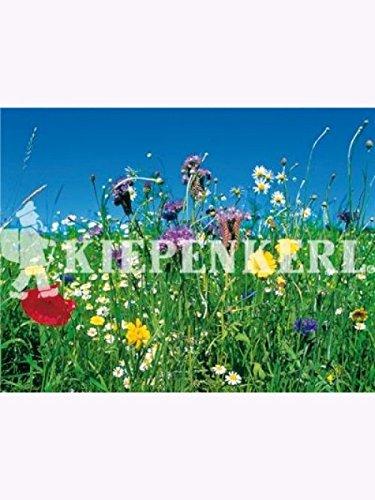 Reine Wildblumen und Kräutermischung 100gr