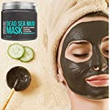 Pure Body Naturals The Best Dead Sea Mud Mask, 250G/ 8.8 Fl. Oz. - Dead Sea Mud Mask Best For Facial Treatment, Minimizes Pores, Reduces Wrinkles, And Improves Overall Complexion