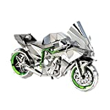 Metal Earth Fascinations Iconx Kawasaki Ninja 3D Metall Puzzle, Konstruktionsspielzeug, Lasergeschnittenes Modell
