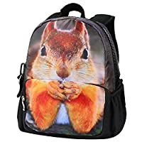 Bistar Galaxy 3D Jurassic World Carrier BackpackBags, Children Carrier Rucksack Backpack For Kids with Large Zip. (Squirrel)
