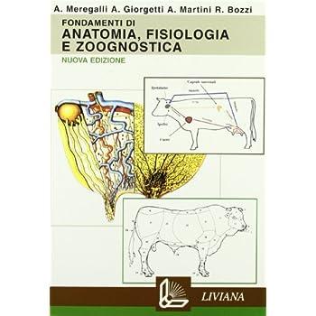 Fond.anatomia Fis.zoognostica