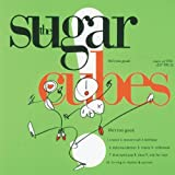 Songtexte von The Sugarcubes - Life's Too Good