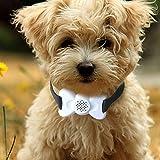 Gorgebuy Tragbar Anti-Bell Hundehalsband für Hunde, hindert Hunde am Bellen mit Ton Vibration,Sichere und effektive
