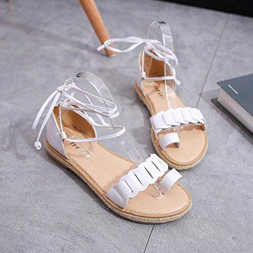 BZLine® Frauen Flache Elastische Sandalen Offene Zehen Klassische  Sommerschuhe Weiß ... be28ab701b
