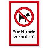 Für Hunde verboten, Hunde Kunststoff Schild - draußen bleiben/Hinweisschild / Türschild/Verbotsschild - Hundeverbot, Verbot Hunde - Restaurants, Läden, Geschäfte, Büros